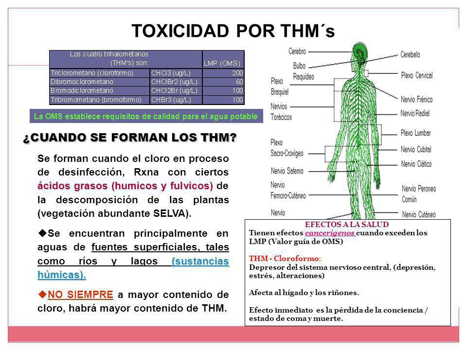 TOXICIDAD POR THM´s EFECTOS A LA SALUD Tienen efectos cancerígenos cuando exceden los LMP (Valor guía de OMS) THM - Cloroformo: Depresor del sistema nervioso central, (depresión, estrés, alteraciones) Afecta al hígado y los riñones.
