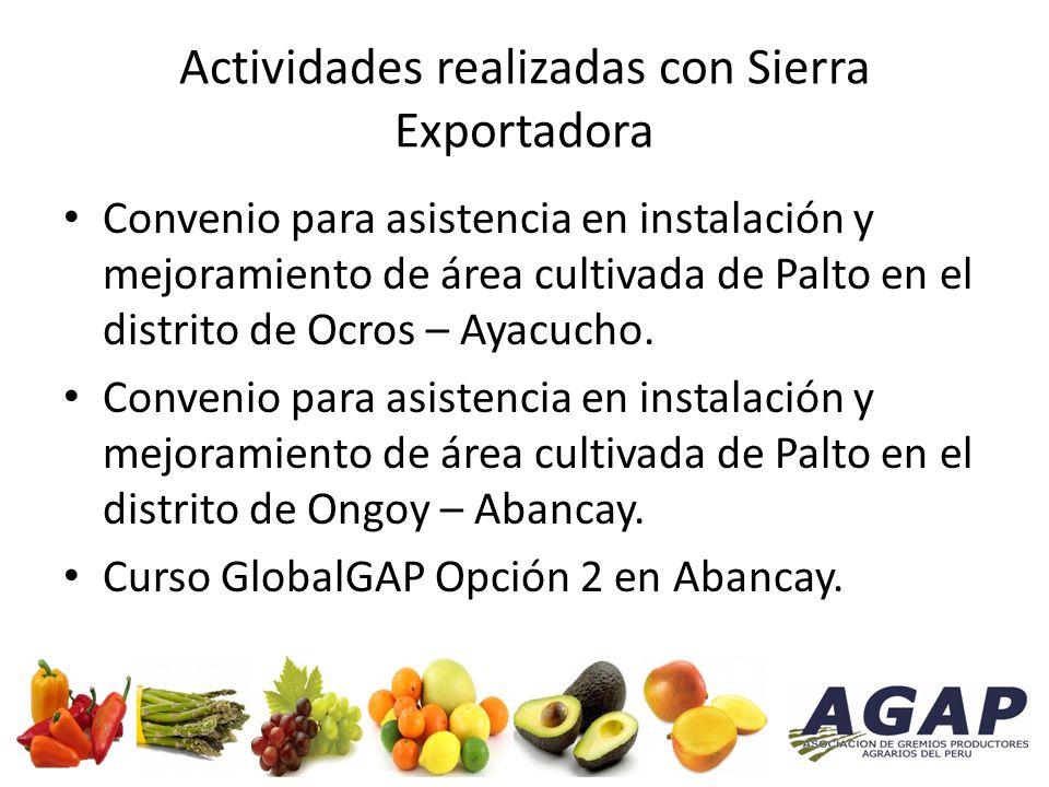 Actividades realizadas con Sierra Exportadora Convenio para asistencia en instalación y mejoramiento de área cultivada de Palto en el distrito de Ocros – Ayacucho.