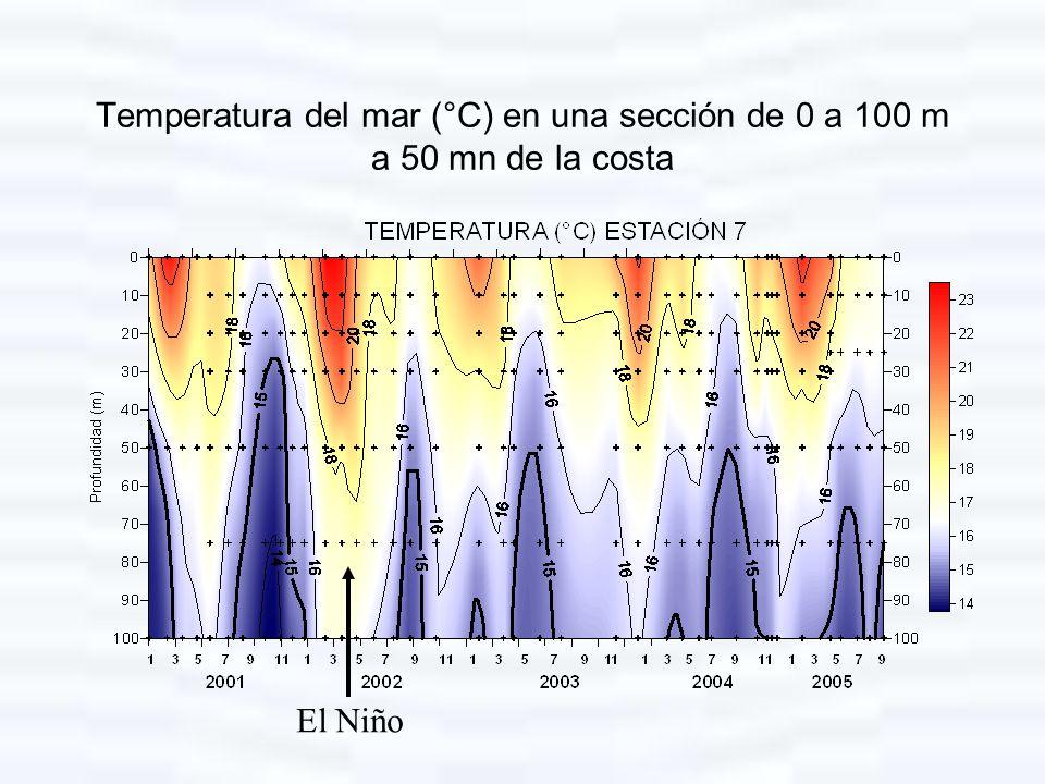 Temperatura del mar (°C) en una sección de 0 a 100 m a 50 mn de la costa El Niño