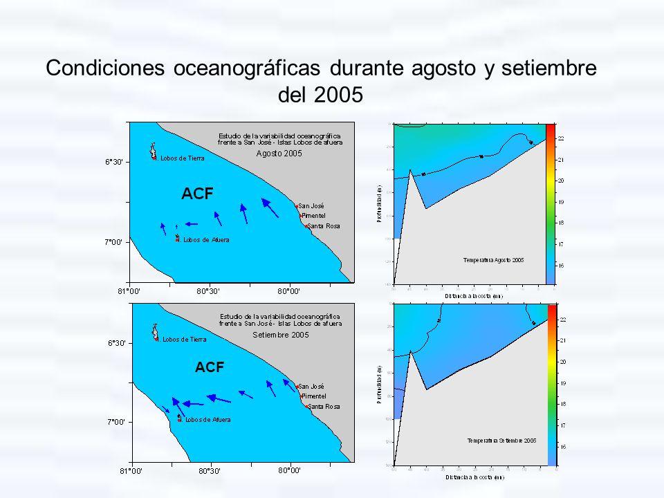 Condiciones oceanográficas durante agosto y setiembre del 2005 ACF
