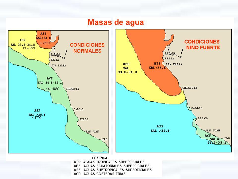 LEYENDA ATS: AGUAS TROPICALES SUPERFICIALES AES: AGUAS ECUATORIALES SUPERFICIALES ASS: AGUAS SUBTROPICALES SUPERFICIALES ACF: AGUAS COSTERAS FRIAS Mas