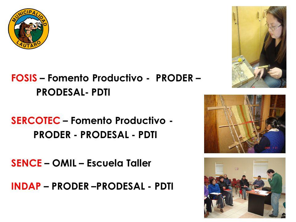 FOSIS – Fomento Productivo - PRODER – PRODESAL- PDTI SERCOTEC – Fomento Productivo - PRODER - PRODESAL - PDTI SENCE – OMIL – Escuela Taller INDAP – PRODER –PRODESAL - PDTI
