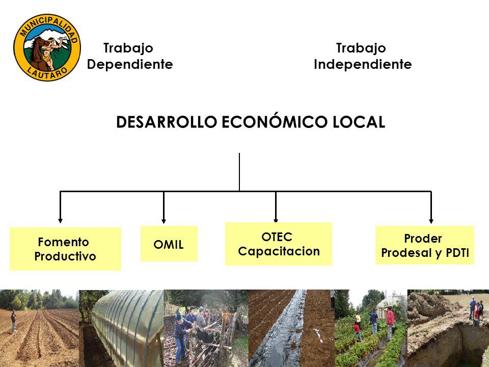 DESARROLLO ECONÓMICO LOCAL Trabajo Dependiente Trabajo Independiente Fomento Productivo OMIL OTEC Capacitacion Proder Prodesal y PDTI