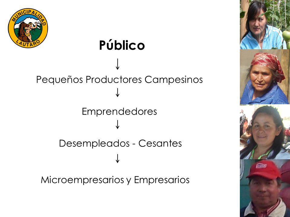 Público Pequeños Productores Campesinos Emprendedores Desempleados - Cesantes Microempresarios y Empresarios