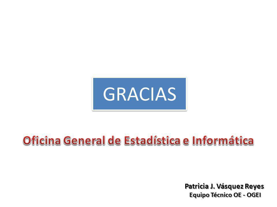 Patricia J. Vásquez Reyes Equipo Técnico OE - OGEI GRACIAS