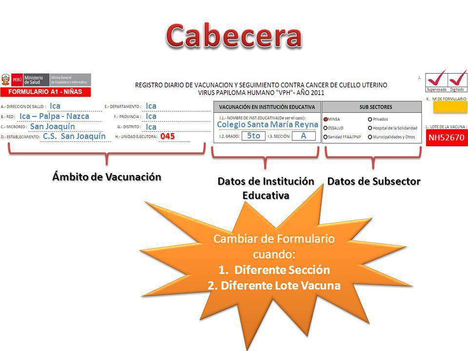 Ámbito de Vacunación Ica Ica – Palpa - Nazca Colegio Santa María Reyna San Joaquín C.S.
