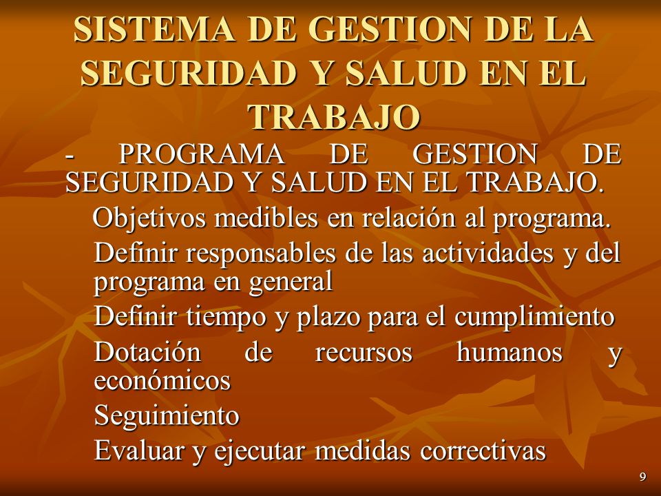 9 - PROGRAMA DE GESTION DE SEGURIDAD Y SALUD EN EL TRABAJO.
