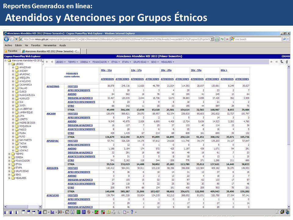 Reportes Generados en línea: Atendidos y Atenciones por Grupos Étnicos