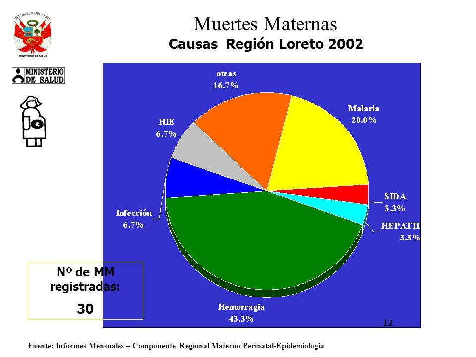 Fuente: Informes Mensuales – Componente Regional Materno Perinatal-Epidemiología Muertes Maternas Causas Región Loreto 2002 Nº de MM registradas: 30 12