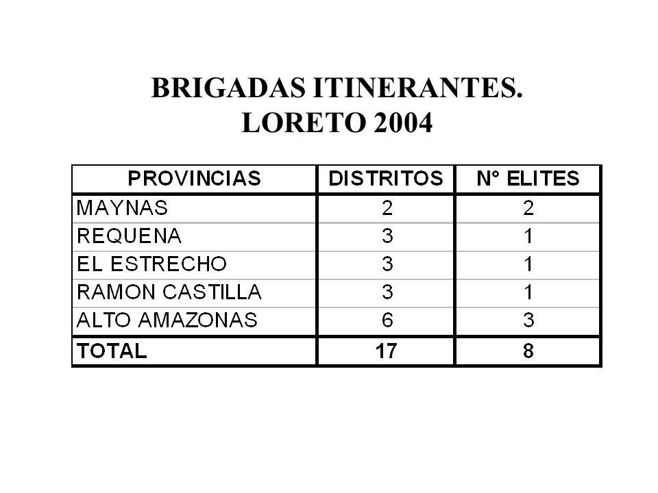 BRIGADAS ITINERANTES. LORETO 2004