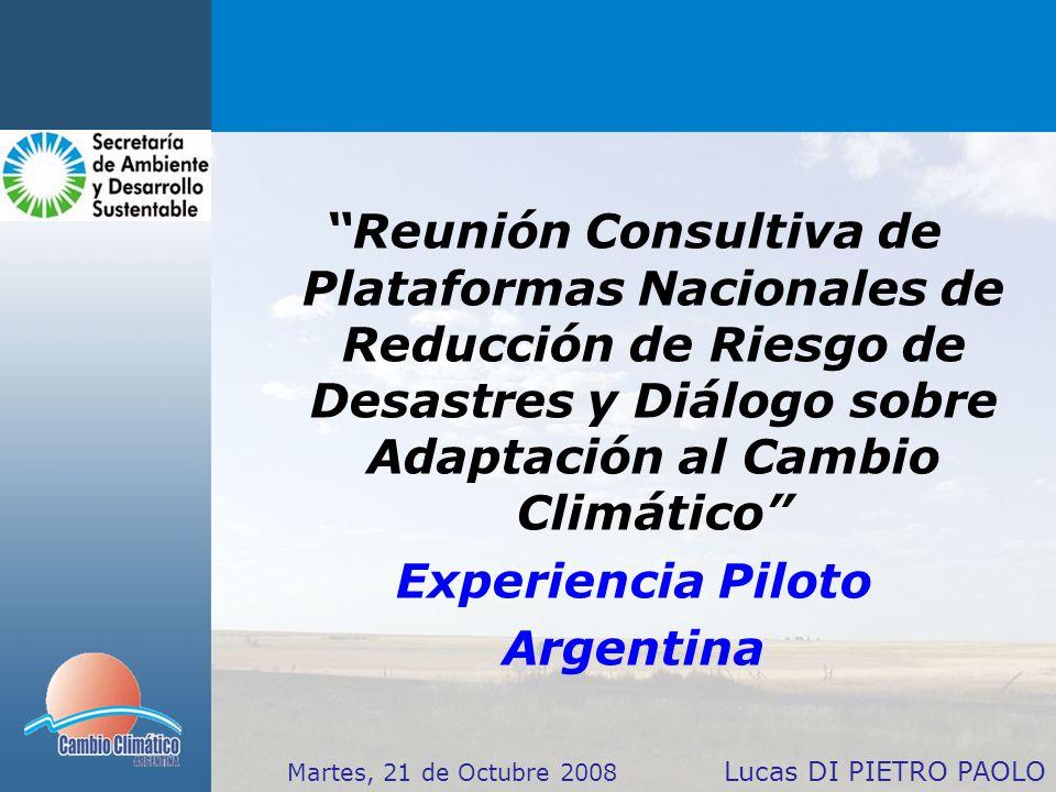 Reunión Consultiva de Plataformas Nacionales de Reducción de Riesgo de Desastres y Diálogo sobre Adaptación al Cambio Climático Experiencia Piloto Argentina Lucas DI PIETRO PAOLO Martes, 21 de Octubre 2008