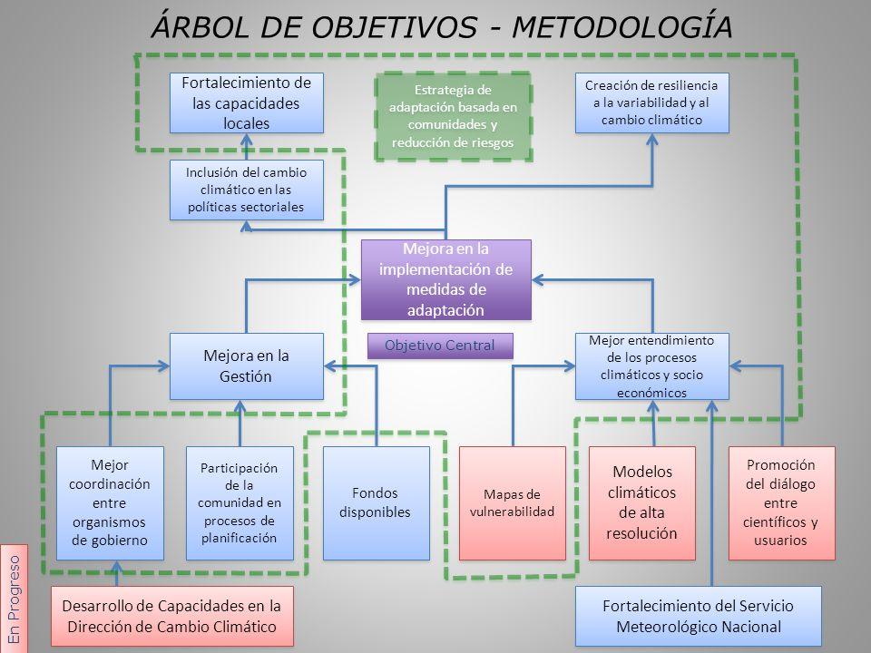 COORDINACIÓN INTER- INSTITUCIONAL La Plataforma Nacional como catalizador de: Diálogo Identificación de socios y articulación de agendas Selección de área de trabajo conjunto Desarrollo de Propuesta: Idea de Proyecto (Cooperación Sur-Sur Argentina – Paraguay) Implementación