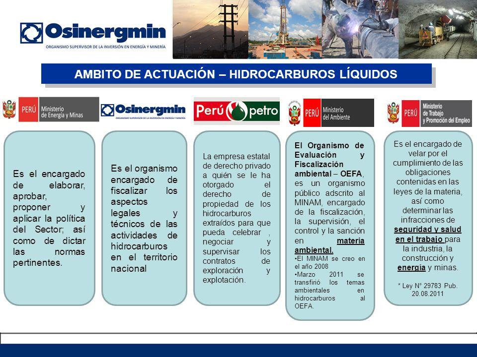 Ley Orgánica de Hidrocarburos, Ley Nº 26221.