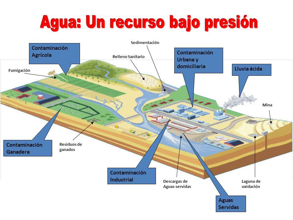 Contaminación Agrícola Contaminación Ganadera Contaminación Urbana y domiciliaria Contaminación Industrial Relleno Sanitario Residuos de ganados Fumig