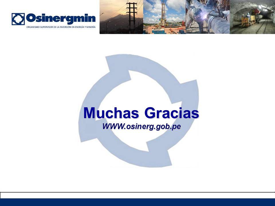 Muchas Gracias WWW.osinerg.gob.pe