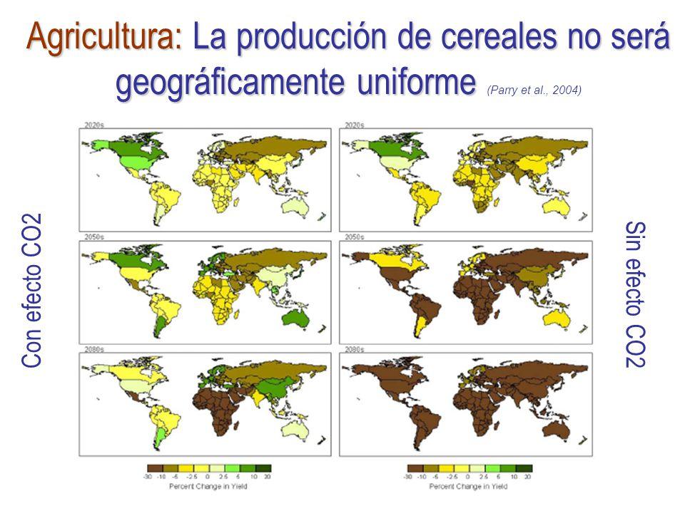 Agricultura: La producción de cereales no será geográficamente uniforme Agricultura: La producción de cereales no será geográficamente uniforme (Parry et al., 2004) Con efecto CO2 Sin efecto CO2