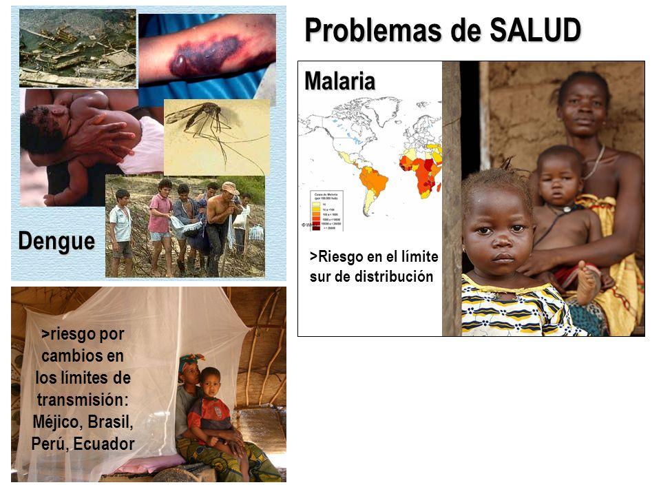 Dengue Problemas de SALUD Malaria >Riesgo en el límite sur de distribución >riesgo por cambios en los límites de transmisión: Méjico, Brasil, Perú, Ecuador