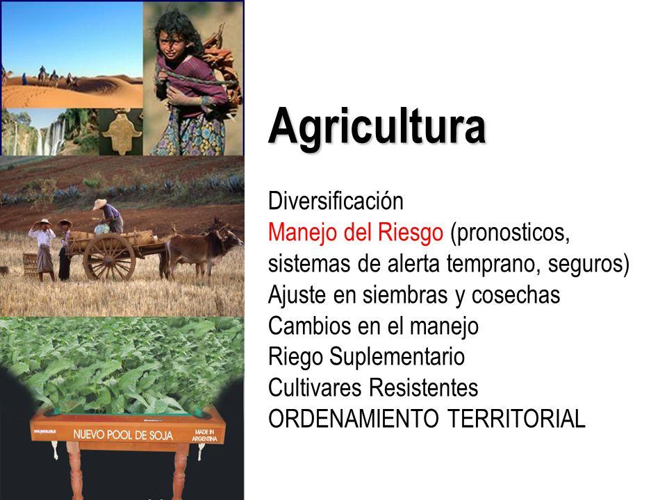 Agricultura Diversificación Manejo del Riesgo (pronosticos, sistemas de alerta temprano, seguros) Ajuste en siembras y cosechas Cambios en el manejo Riego Suplementario Cultivares Resistentes ORDENAMIENTO TERRITORIAL