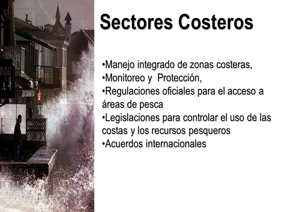 Manejo integrado de zonas costeras,Manejo integrado de zonas costeras, Monitoreo y Protección,Monitoreo y Protección, Regulaciones oficiales para el acceso a áreas de pescaRegulaciones oficiales para el acceso a áreas de pesca Legislaciones para controlar el uso de las costas y los recursos pesquerosLegislaciones para controlar el uso de las costas y los recursos pesqueros Acuerdos internacionalesAcuerdos internacionales Sectores Costeros