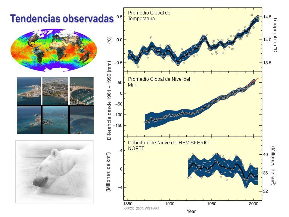 Temperatura ºC (Millones de km 2 ) Diferencia desde 1961 – 1990 (mm) (Millones de km 2 ) Promedio Global de Temperatura Promedio Global de Nivel del Mar Cobertura de Nieve del HEMISFERIO NORTE Tendencias observadas