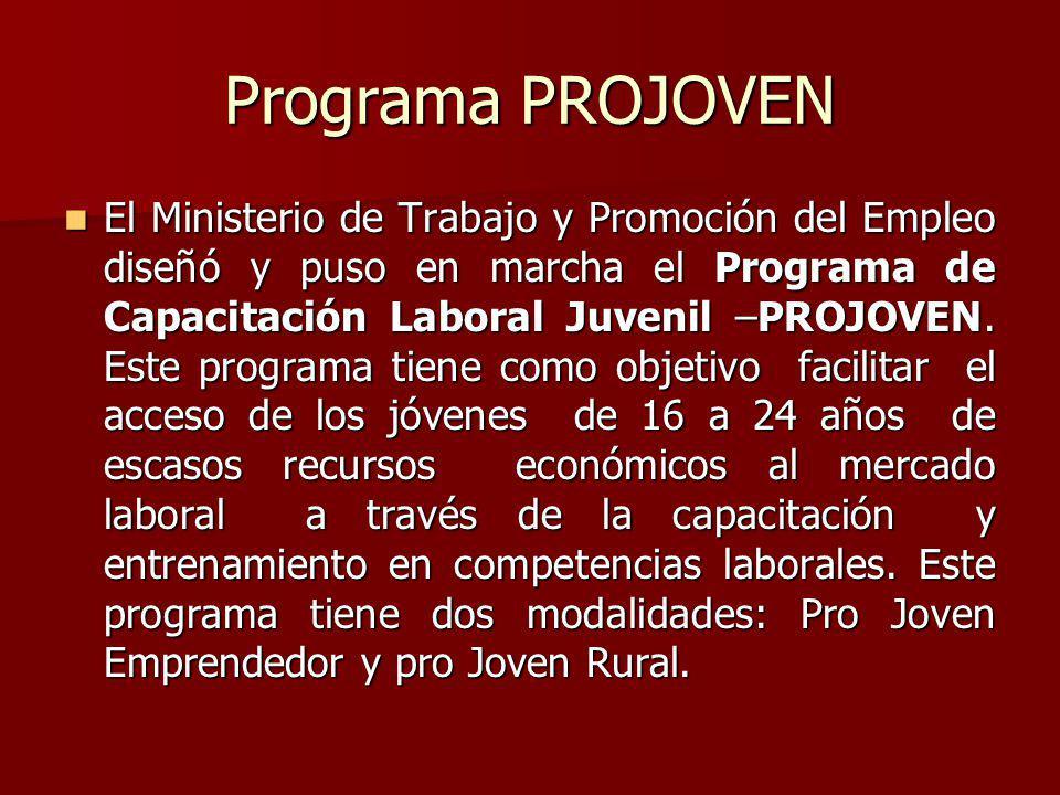 Programa PROJOVEN El Ministerio de Trabajo y Promoción del Empleo diseñó y puso en marcha el Programa de Capacitación Laboral Juvenil –PROJOVEN. Este