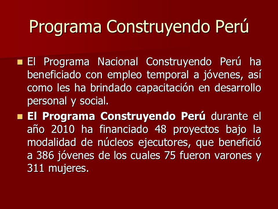 El Programa Nacional Construyendo Perú ha beneficiado con empleo temporal a jóvenes, así como les ha brindado capacitación en desarrollo personal y social.