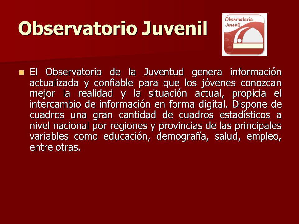 Observatorio Juvenil El Observatorio de la Juventud genera información actualizada y confiable para que los jóvenes conozcan mejor la realidad y la situación actual, propicia el intercambio de información en forma digital.