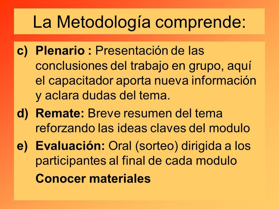 c)Plenario : Presentación de las conclusiones del trabajo en grupo, aquí el capacitador aporta nueva información y aclara dudas del tema.