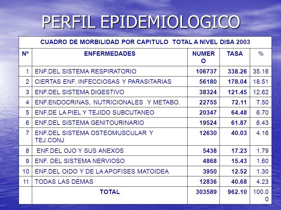 PERFIL EPIDEMIOLOGICO CUADRO DE MORBILIDAD POR CAPITULO TOTAL A NIVEL DISA 2003 NºENFERMEDADESNUMER O TASA% 1ENF.DEL SISTEMA RESPIRATORIO106737338.263