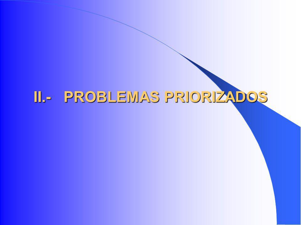 II.-PROBLEMAS PRIORIZADOS