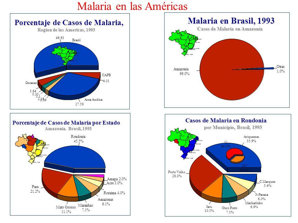 Sao Paulo Salvador Recife Belém Manaus Porto Alegre Brasilia 31 64.0% 267 36.0% Malaria en las Américas