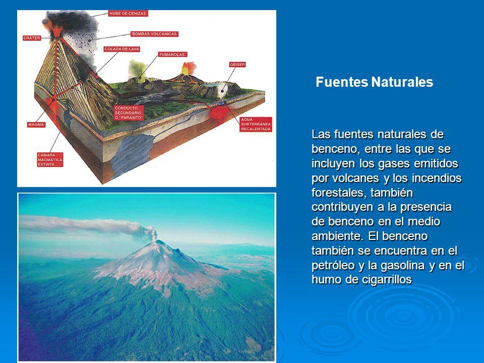 Las fuentes naturales de benceno, entre las que se incluyen los gases emitidos por volcanes y los incendios forestales, también contribuyen a la prese