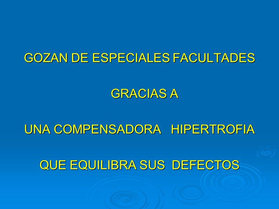 GOZAN DE ESPECIALES FACULTADES GRACIAS A GRACIAS A UNA COMPENSADORA HIPERTROFIA QUE EQUILIBRA SUS DEFECTOS