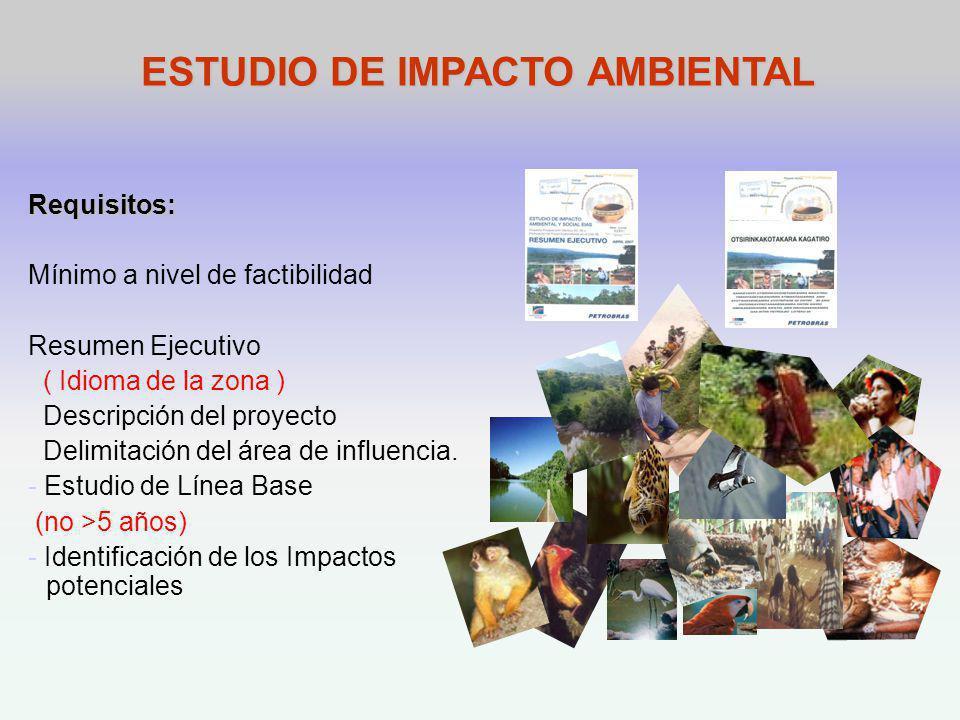 ESTUDIO DE IMPACTO AMBIENTAL Requisitos: Mínimo a nivel de factibilidad Resumen Ejecutivo ( Idioma de la zona ) Descripción del proyecto Delimitación del área de influencia.