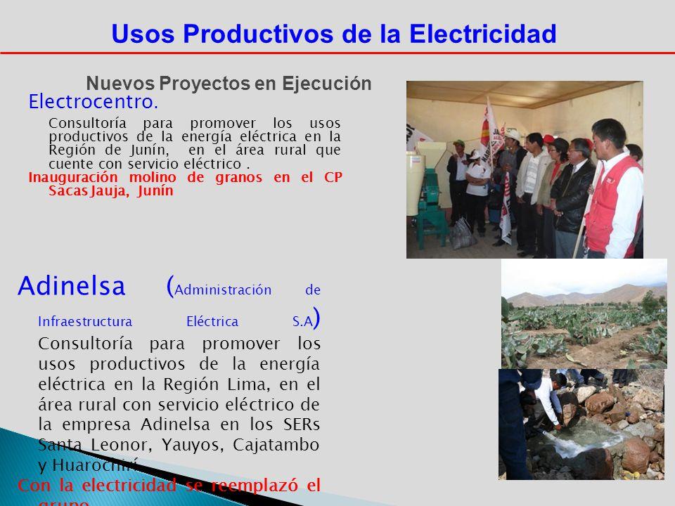 Electrocentro. Consultoría para promover los usos productivos de la energía eléctrica en la Región de Junín, en el área rural que cuente con servicio