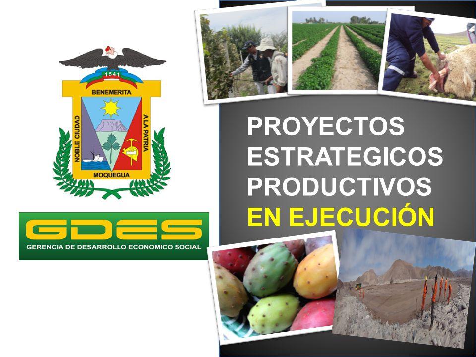 OBJETIVO GENERAL Mejorar la producción alpaquera en los Distritos seleccionados de la Provincia Mariscal Nieto PROYECTO: Mejoramiento de la Cadena Productiva de la Alpaca en los Distritos de Carumas, Cuchumbaya y San Cristóbal, Provincia Mariscal Nieto, Moquegua POBLACION BENEFICIARIA: 404 cabañas 2,424 criadores PRESUPUESTO : S/.