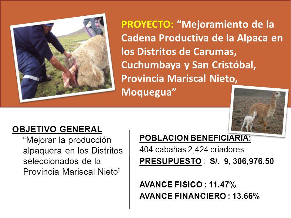 OBJETIVO GENERAL Mejorar la producción alpaquera en los Distritos seleccionados de la Provincia Mariscal Nieto PROYECTO: Mejoramiento de la Cadena Pro