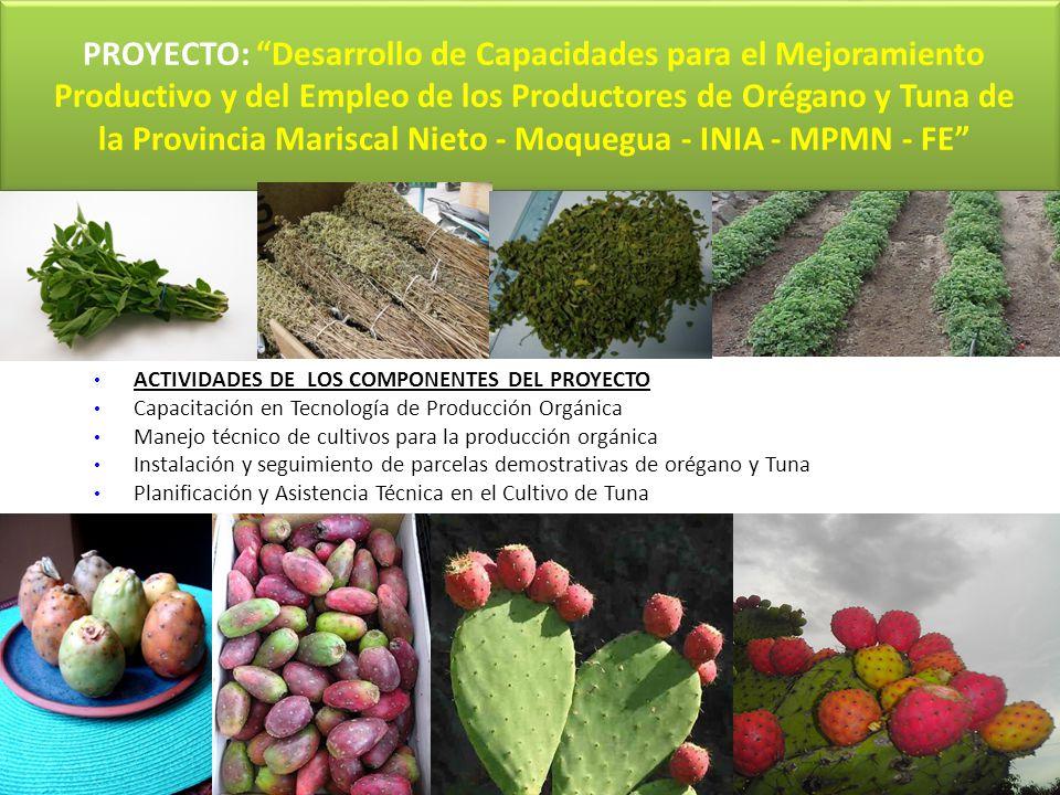 PROYECTO: Desarrollo de Capacidades para el Mejoramiento Productivo y del Empleo de los Productores de Orégano y Tuna de la Provincia Mariscal Nieto -