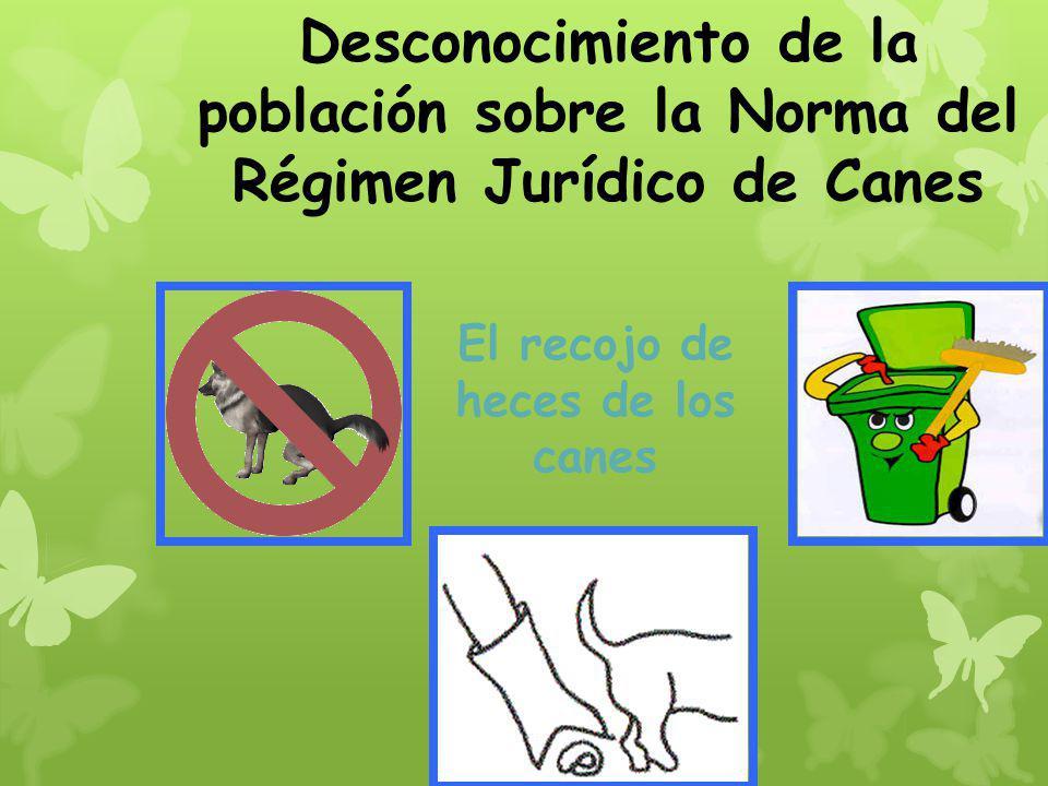 Desconocimiento de la población sobre la Norma del Régimen Jurídico de Canes El recojo de heces de los canes