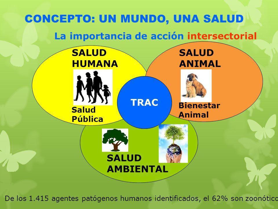 SALUD ANIMAL TRAC SALUD HUMANA CONCEPTO: UN MUNDO, UNA SALUD SALUD AMBIENTAL Bienestar Animal Salud Pública La importancia de acción intersectorial De