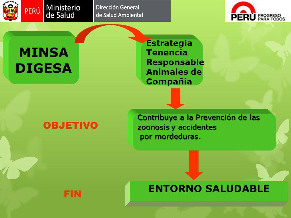ENTORNO SALUDABLE MINSA DIGESA Estrategia T enencia R esponsable A nimales de C ompañía FIN Contribuye a la Prevención de las zoonosis y accidentes po