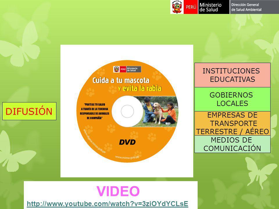 VIDEO http://www.youtube.com/watch?v=3ziOYdYCLsE DIFUSIÓN EMPRESAS DE TRANSPORTE TERRESTRE / AÉREO MEDIOS DE COMUNICACIÓN GOBIERNOS LOCALES INSTITUCIO