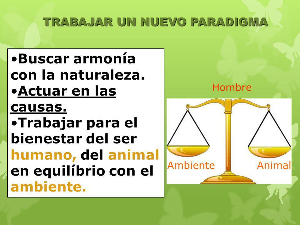 TRABAJAR UN NUEVO PARADIGMA Buscar armonía con la naturaleza. Actuar en las causas. Trabajar para el bienestar del ser humano, del animal en equilíbri