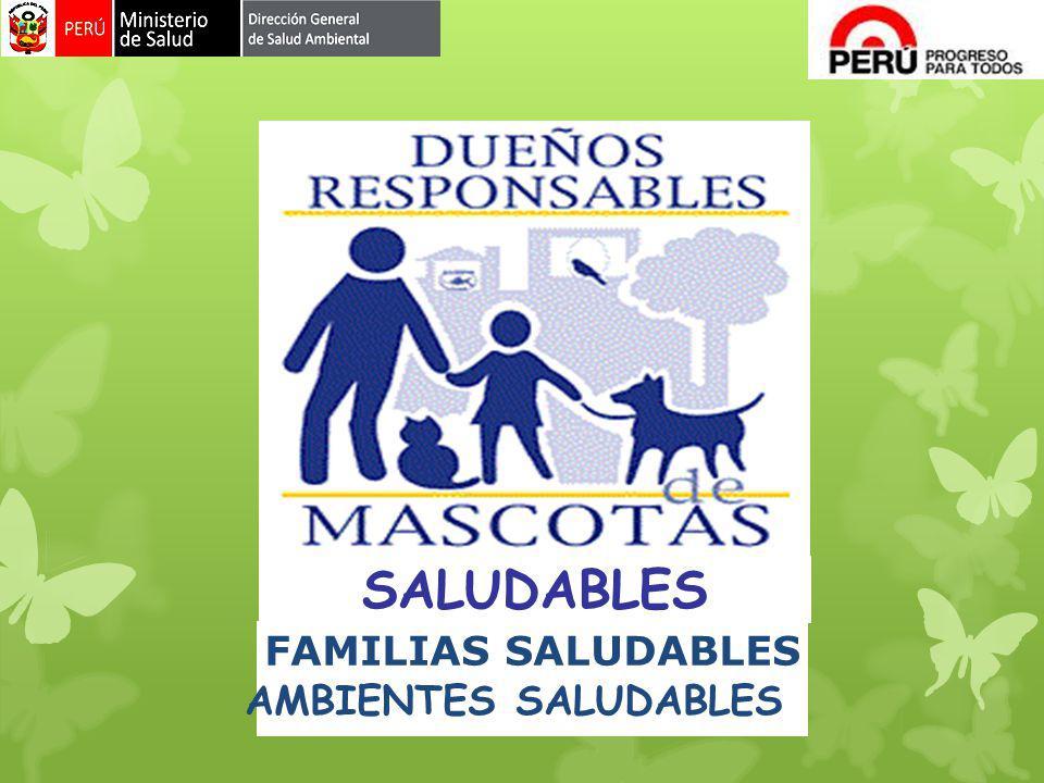 SALUDABLES AMBIENTES SALUDABLES FAMILIAS SALUDABLES