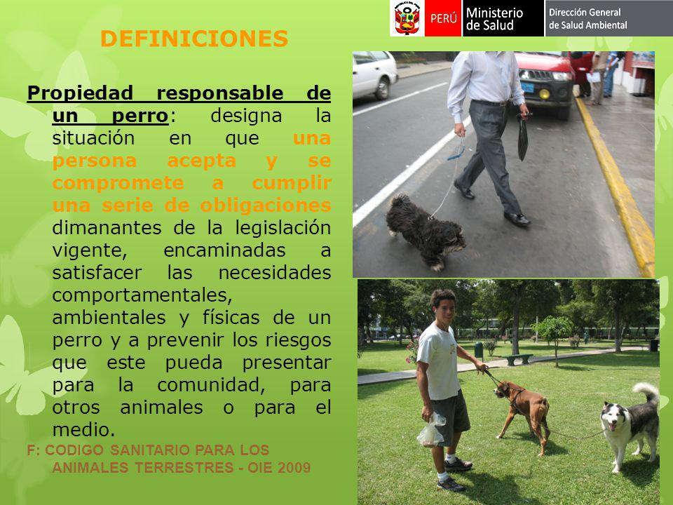 Propiedad responsable de un perro: designa la situación en que una persona acepta y se compromete a cumplir una serie de obligaciones dimanantes de la