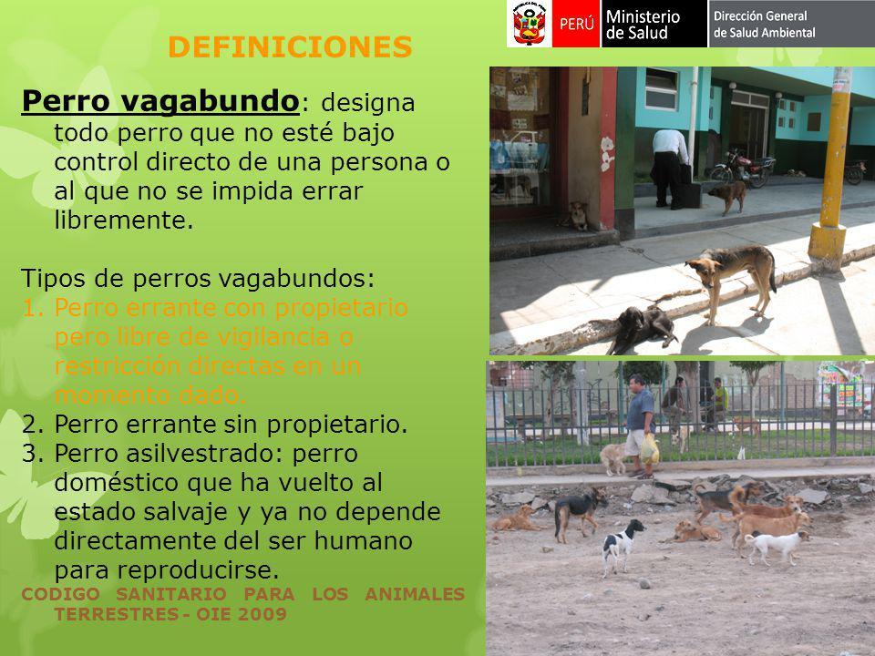 Perro vagabundo : designa todo perro que no esté bajo control directo de una persona o al que no se impida errar libremente. Tipos de perros vagabundo