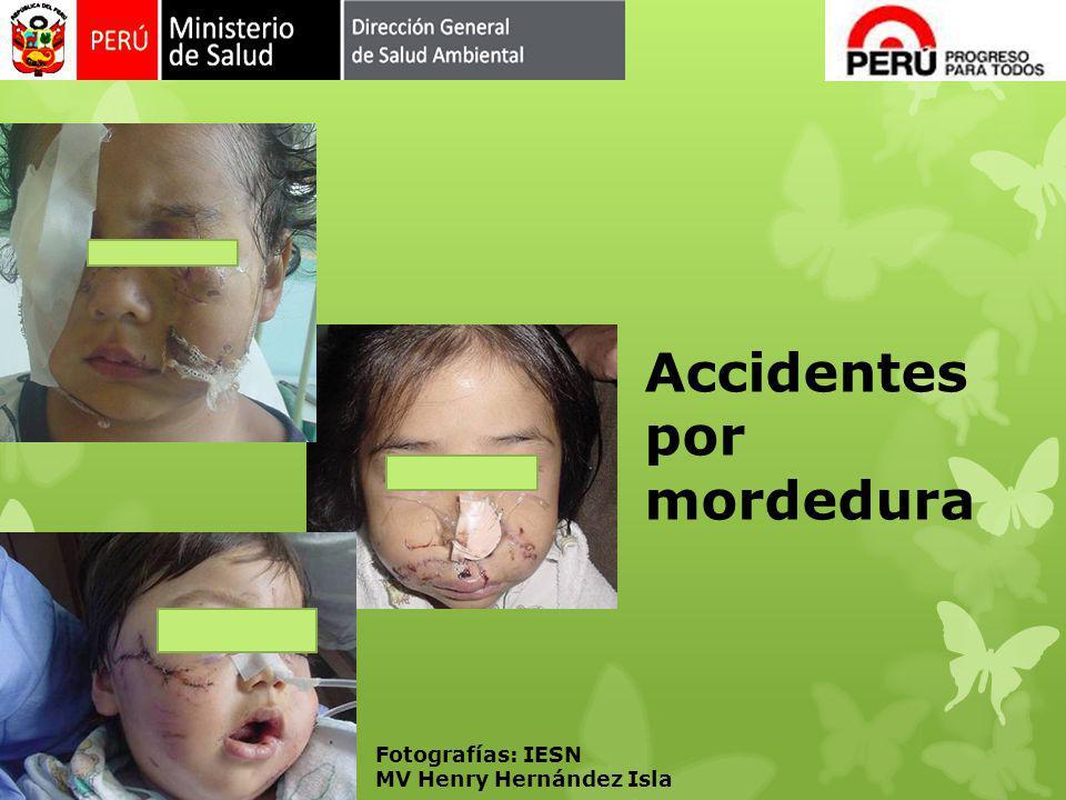 Accidentes por mordedura Fotografías: IESN MV Henry Hernández Isla