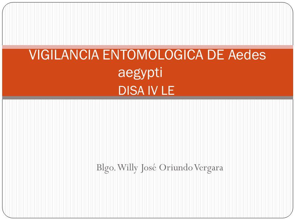 Blgo. Willy José Oriundo Vergara VIGILANCIA ENTOMOLOGICA DE Aedes aegypti DISA IV LE