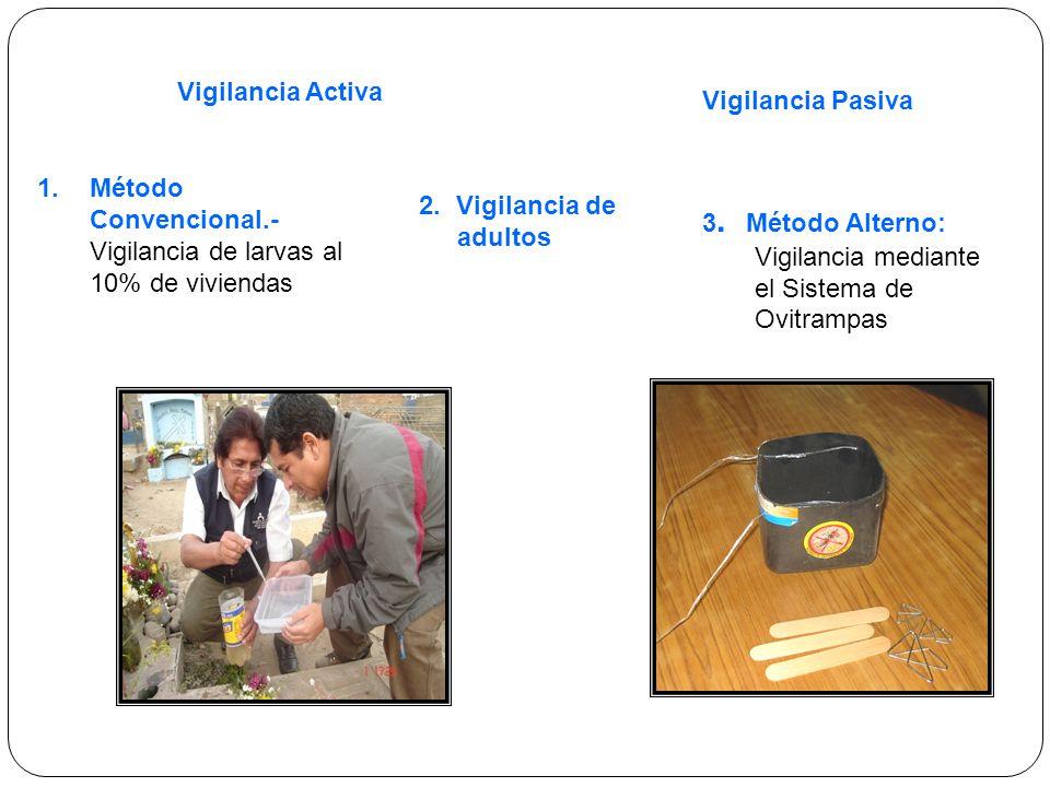 1.Método Convencional.- Vigilancia de larvas al 10% de viviendas 3.
