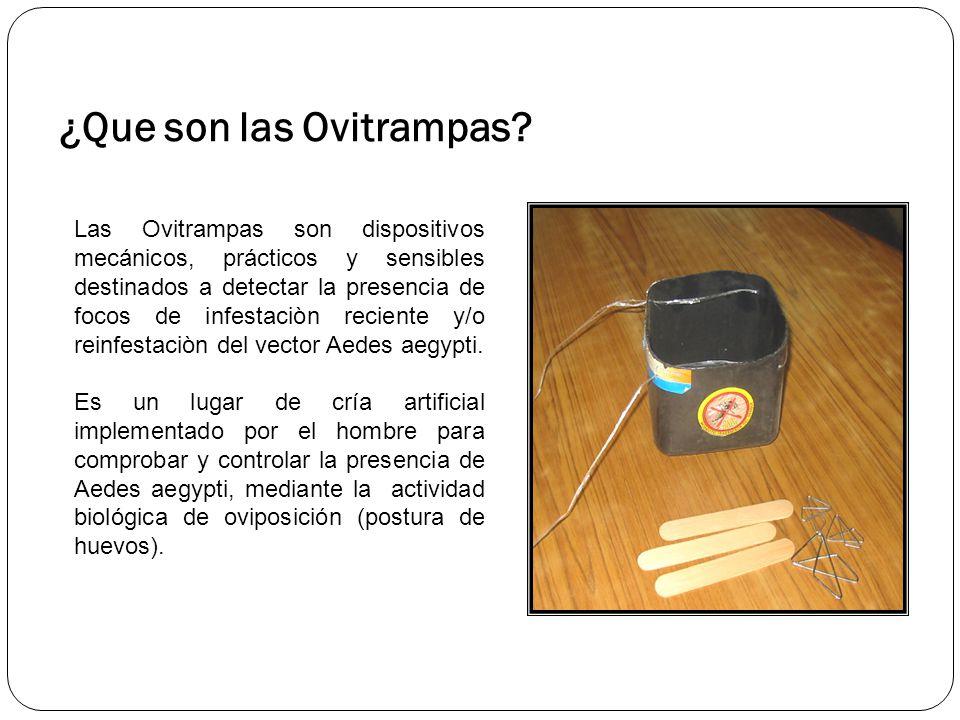 ¿Que son las Ovitrampas.